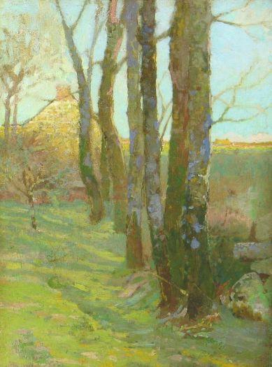 redonwoods