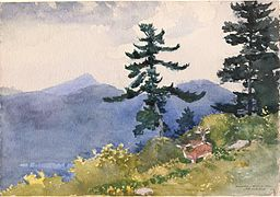 Winslow_Homer_-_North_Woods_Club,_Adirondacks_(The_Interrupted_Tete-a-Tete)